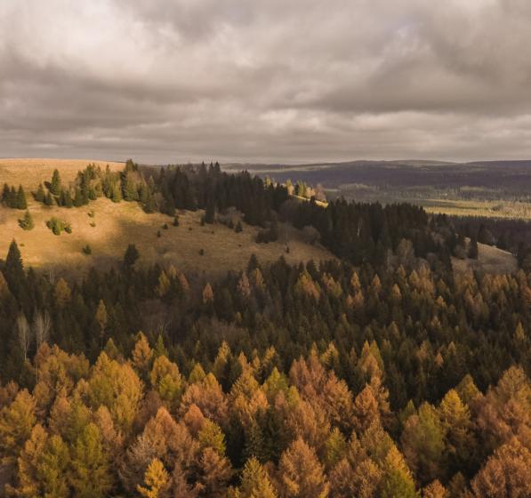 Złota jesień pod Orlicą